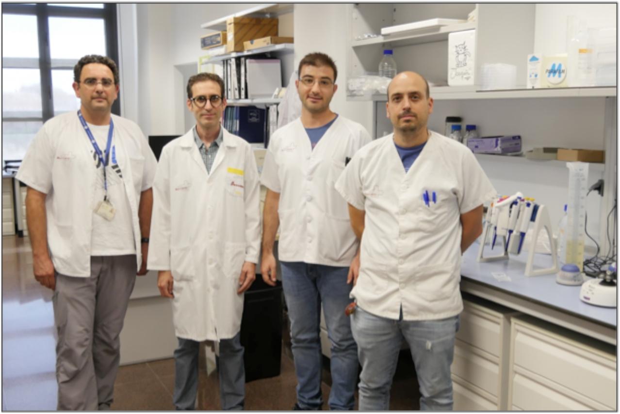 De izquierda a derecha, Carlos de Torre-Minguela, Pablo Pelegrín, Helios Martínez-Banaclocha y Diego Angosto-Bazarra.