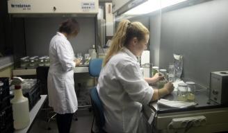 Laboratorios CEBAS-CSIC