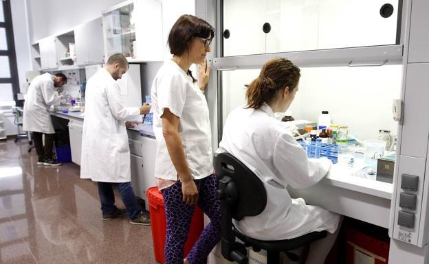 Instituto Murciano de Investigación Biosanitaria
